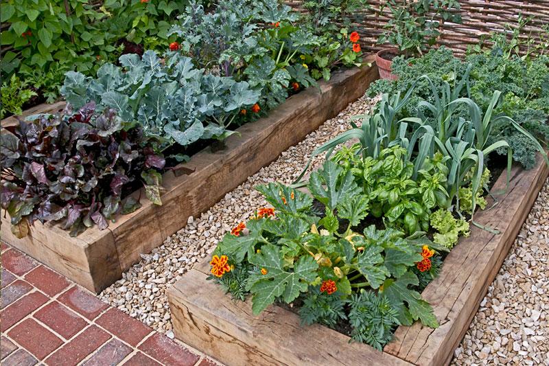 Durmiente natural 5 x 10 x 180 cm durmientes de madera - Plantas para jardineras ...