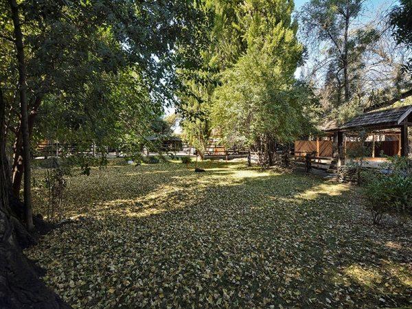 Jardín-Oficina